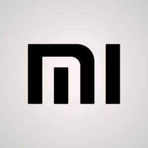 12- Xiaomi Pil